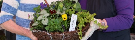 FREE Hanging Basket Workshop