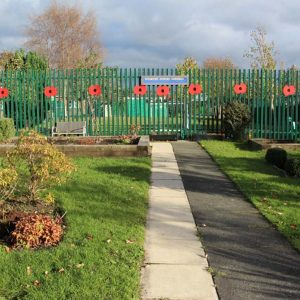 community garden poppies