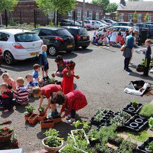 hanging baskets planting session children
